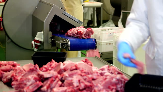 Meat Processing Plant Workers at Work video