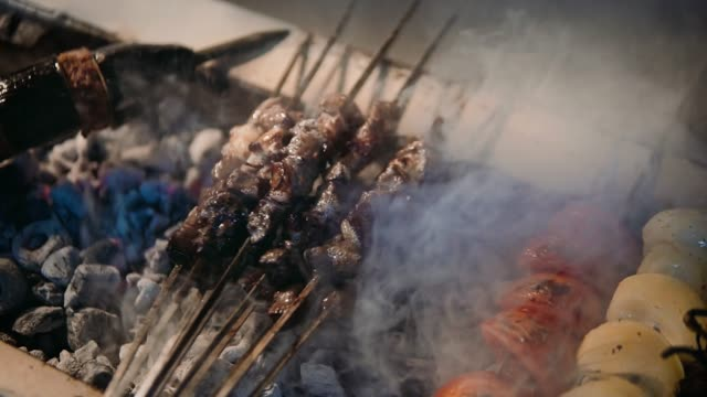 Meat shish kebab cooking on barbecue grill video