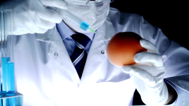 Medical Laboratory Scientist Injecting Fruit Genetic Research video