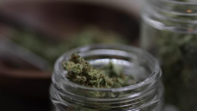 medicinsk marijuana - 4k - hasch bildbanksvideor och videomaterial från bakom kulisserna