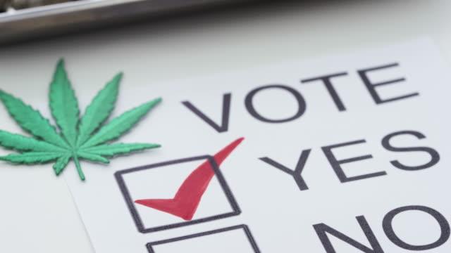 medicinsk marijuana legalisering amerika - hasch bildbanksvideor och videomaterial från bakom kulisserna