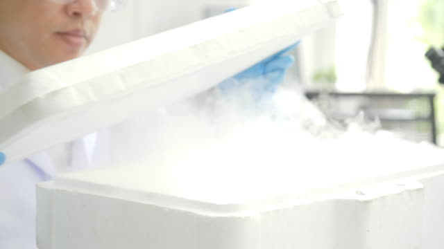 vídeos de stock e filmes b-roll de medical research scientist takes out petri dish with frozen samples of cells from a cryogenic nitrogen container in a science research lab. he works in a busy modern laboratory center - congelador