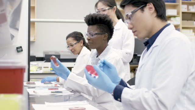 Medical research team analyzing samples in a laboratory