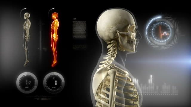 Medical scan interface - Human Skeleton concept video