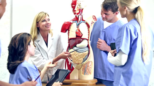 Medical students in anatomy class with instructor