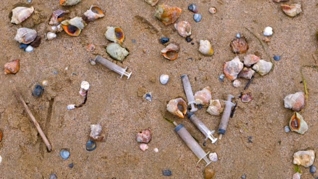 Medical syringes among the rapan shells in sand on sea beach after storm. video