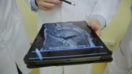 istock Medical team analyzing x-ray scans on digital tablet 1184593666