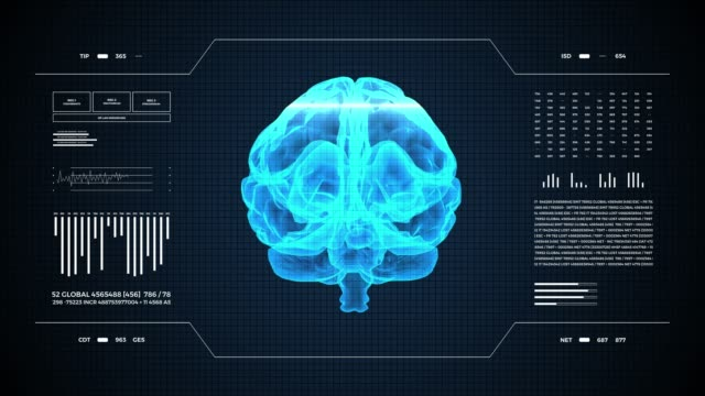 Medical UHD abstract animation. Laboratory dashboard interface. Human brian study on diagnostic computer display. Medical UHD abstract animation. Laboratory dashboard interface 4K. Human brian study on diagnostic computer display. cerebellum stock videos & royalty-free footage