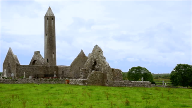 Medieval Irish Castle and Tower in the Countryside video