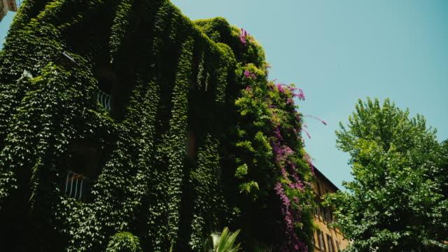 중세 삼각형 집, 모든 아이비와 함께 자란된입니다. 로마, 이탈리아의 오래 된 부분 - 아이비 스톡 비디오 및 b-롤 화면