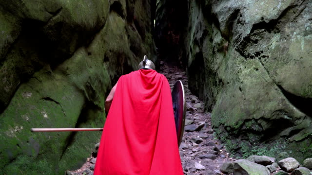 Medieval warrior in the woods video