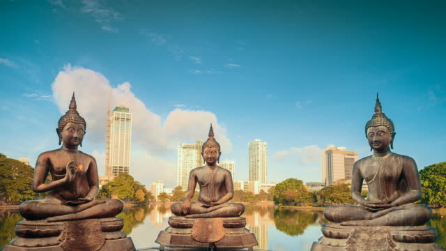 Meditating Buddhas timelapse Bronze statues of benevolent Buddhas sitting in meditation on the modern city by the lake background timelapse at sunrise time. buddha stock videos & royalty-free footage