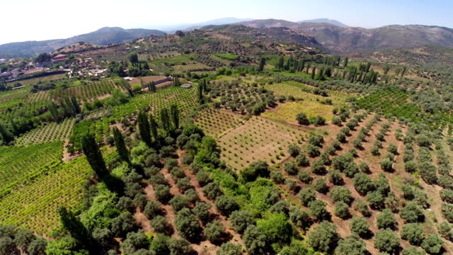 stockvideo's en b-roll-footage met mediterranean landscape from air - portugal