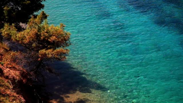 Mediterranean Sea video