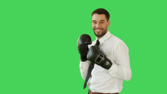 Medium Shot of a Handsome Man in a Shirt and Tie Wearing Boxing Glove Making Knockout Raises His Hands in a Winning Gesture. Background is Green Screen. video