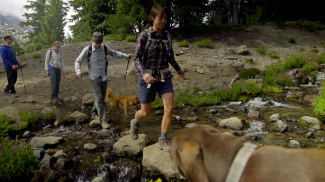 Medium shot of hikers crossing stream video