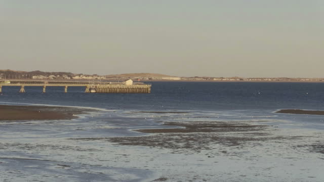 Medium Zoom over the mud flats, to Provincetown Harbor pier video