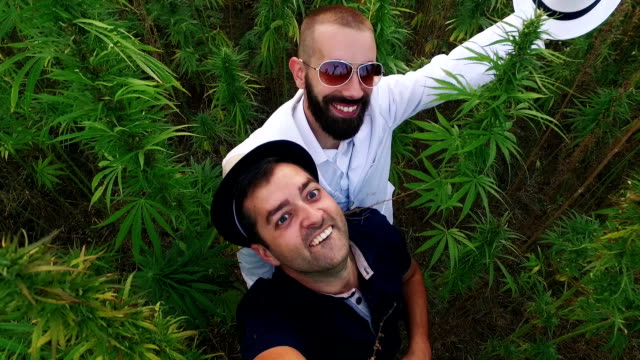 Men and Cannabis. Slow motion video