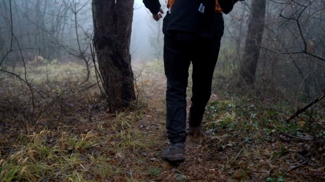 Men hiking in foggy forest