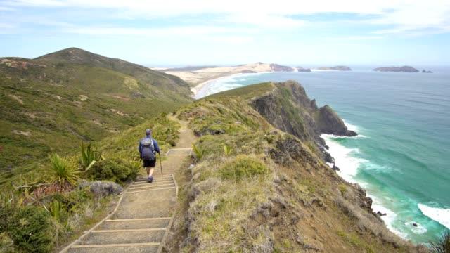vídeos y material grabado en eventos de stock de los hombres son senderismo en el paisaje de la costa del océano de nueva zelanda - nueva zelanda