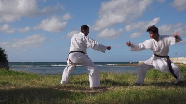 Men Kicking Punching Fighting During Combat Sport Karate Simulation video