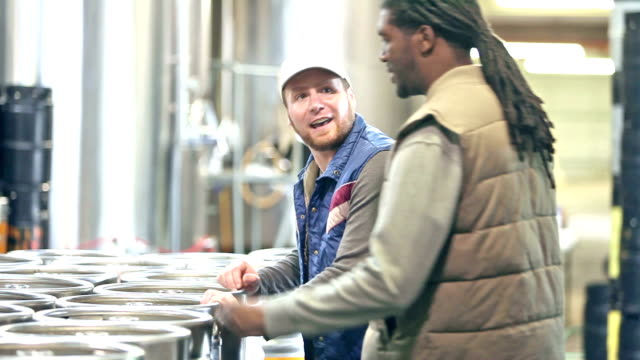 Men working in micro brewery - video