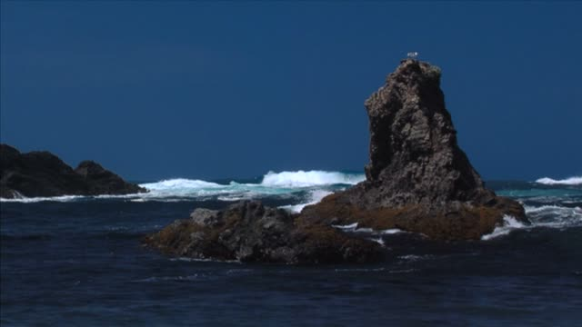Mendocino Rocks and Waves video