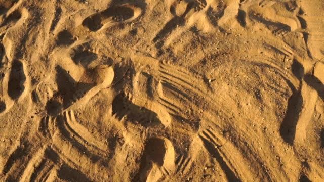 남자 야구 선수들이 모래 사장에서 미끄러지고 있었습니다. - 20 29세 스톡 비디오 및 b-롤 화면