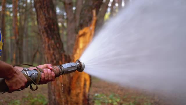 mäns händer hålla en brand slang som vattnet rinner under tryck i tallskog - släcka bildbanksvideor och videomaterial från bakom kulisserna