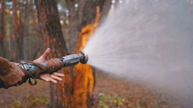 Men's Hands Hold a Fire Hose from Which Water Runs under Pressure in Pine Forest