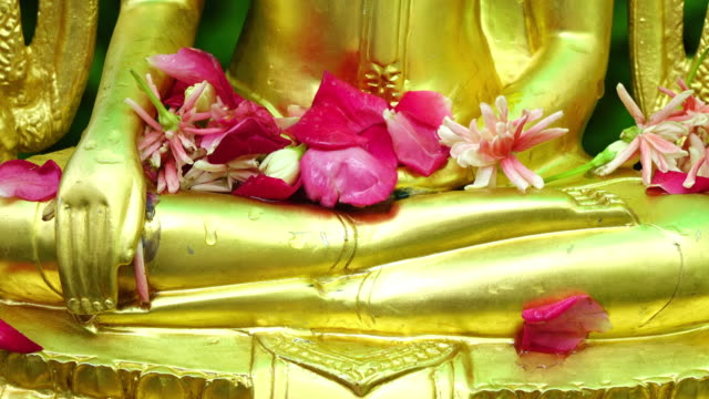 vídeos de stock, filmes e b-roll de mérito as bênçãos trouxe a tradição da tailândia. - ano novo budista
