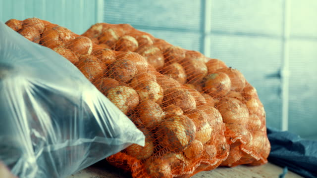 Mesh bags with onions Mesh bags with onions onion stock videos & royalty-free footage