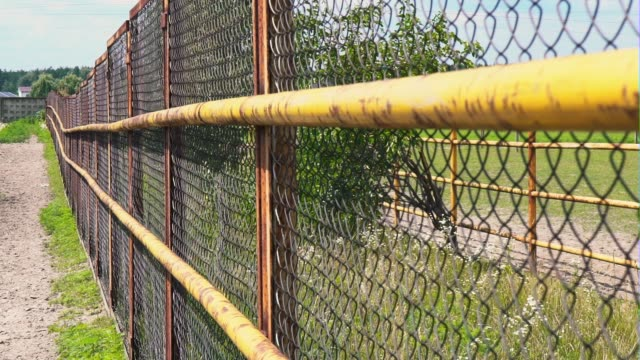 Mesh fencing. Iron fence on a horse farm. The grid of the corral Mesh fencing. Iron fence on a horse farm. The grid of the corral under the open sky corral stock videos & royalty-free footage