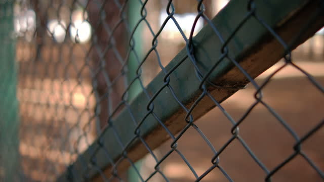 Mesh wire fence panning