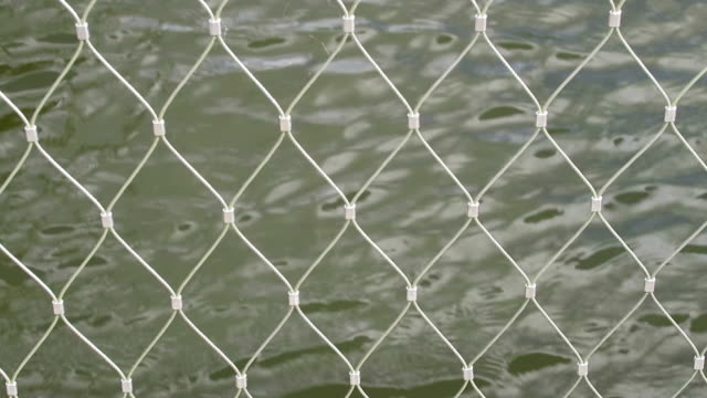 metal grid. fence against water. natural background video