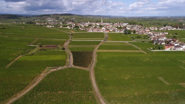 Meursault Burgundy  from above flying forward Meursault Burgundy  from above flying forward pasture stock videos & royalty-free footage