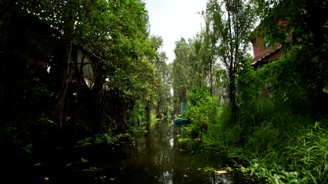 Mexico City Canals video