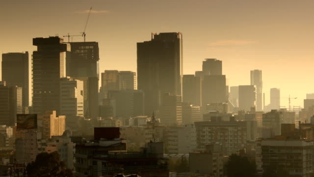 mexico city sunrise skyline - город мехико стоковые видео и кадры b-roll