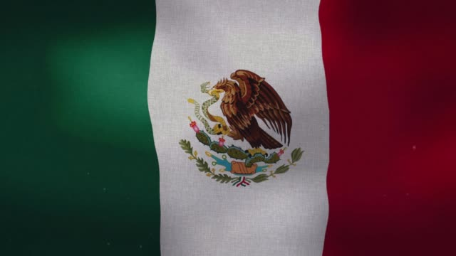 Mexico National Flag - Waving The Mexican national waving flag. president stock videos & royalty-free footage