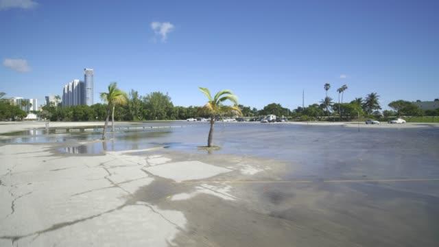 vídeos y material grabado en eventos de stock de miami beach inunda el king tide y el clima de huracanes - marea