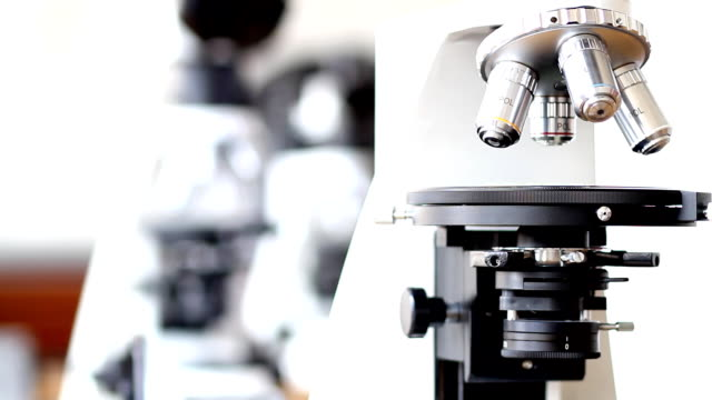 Microscope (HD) Microscope high scale magnification stock videos & royalty-free footage