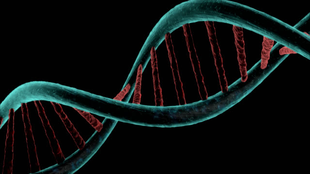 Microscopic view of dna chain strands rotating in black background video