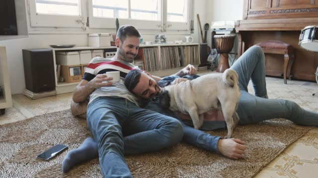 mid adult gay couple playing with their pug lying down on rug at home - same sex couples stock videos and b-roll footage