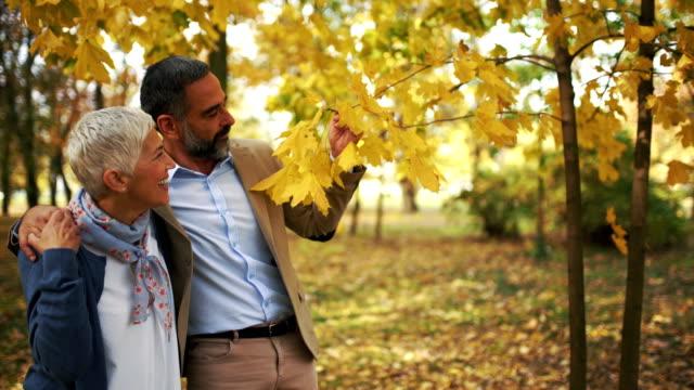 vídeos de stock, filmes e b-roll de meados envelhecido casal caminhando em um parque. - outono
