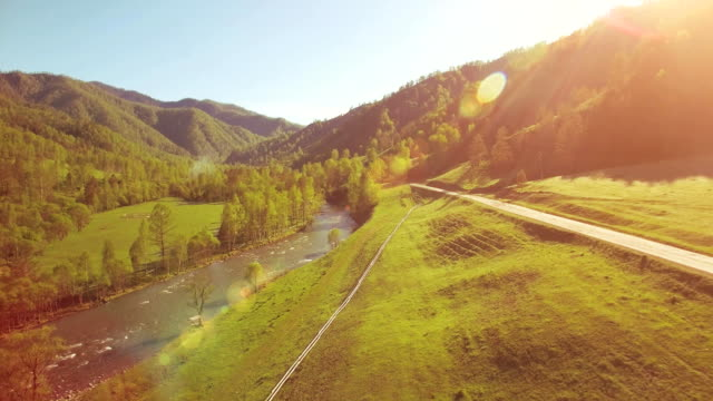 mid air flight over fresh mountain river and meadow at sunny summer morning. rural dirt road below - pianta sempreverde video stock e b–roll