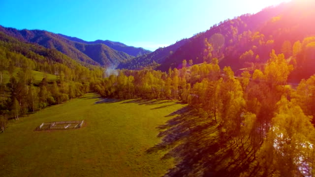 vídeos de stock e filmes b-roll de mid air flight over fresh mountain river and meadow at sunny summer morning. rural dirt road below - margem do rio
