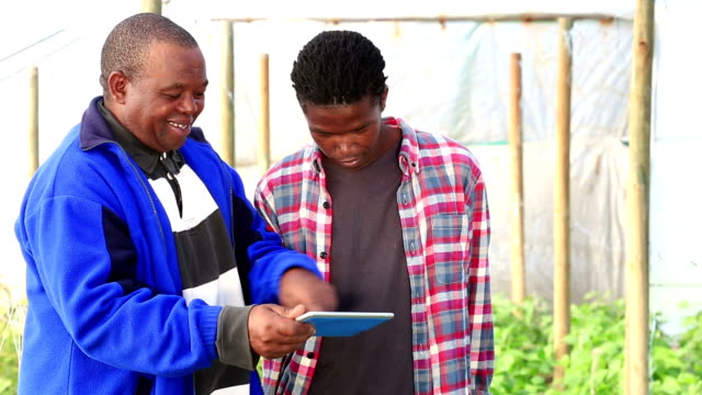 Mid shot as African Organic Farmers discuss over digital tablet video