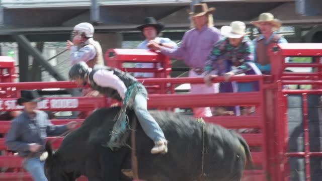 vídeos y material grabado en eventos de stock de mediados tiro como joven vaquero monta un toro - rodeo
