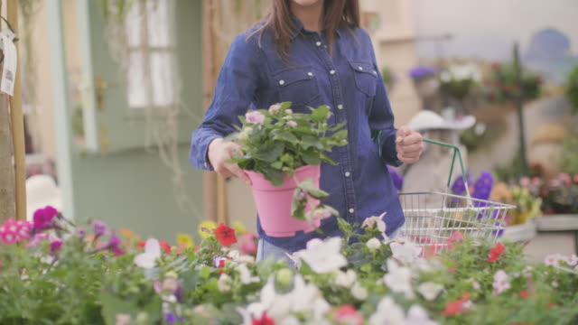 Midsection of woman carrying shopping basket while buying flower pot