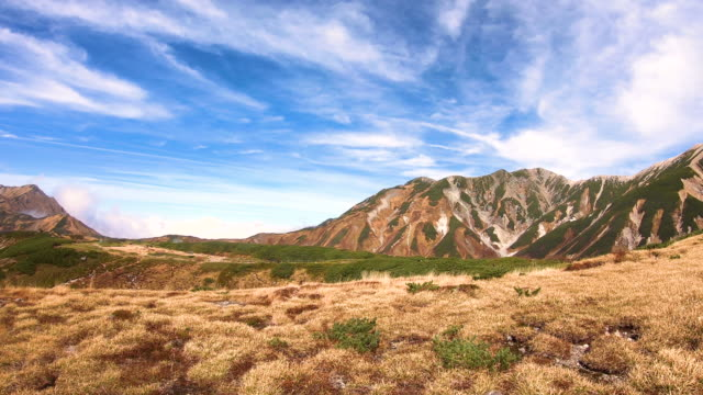 mikurigaike pond and murodo plateau in tateyama kurobe alpine route, toyama, japan - równina filmów i materiałów b-roll